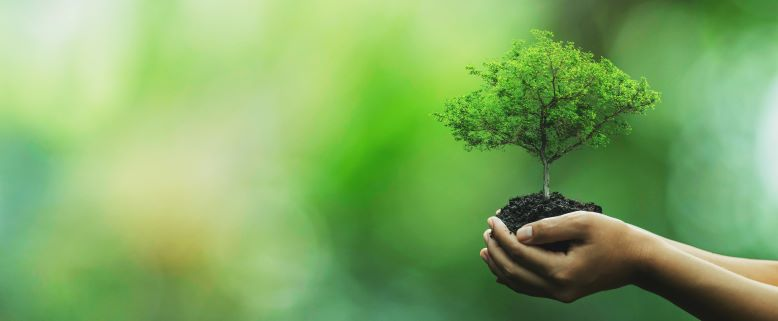 5 Easy Ways to Make Your Lifestyle More Eco-Friendly