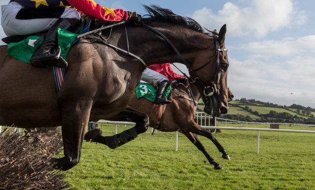Why Does the Ante-Post Market Have Honeysuckle as a Strong Champion Hurdle Contender?