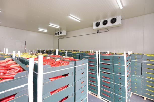 5 Factors for Safe Food Storage and Distribution